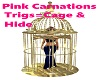 Bird Cage Hide & Cage