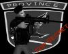 PAF m4 Assalt Rifle