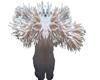 rock flower coral reef