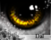 `Ⓓ`Doll Eyes 7