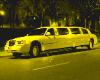 The Golden Limousine $$$