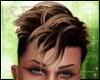 DEx Hair BRown Blonde