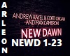 New Dawn Andrew Rayel