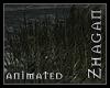 [Z] HI windsweept Reed
