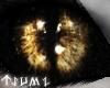 ~Tsu Lupine Eyes
