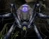 E*  Witch's spider