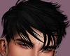 Hair Black Shephard