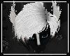 e Skunki |H 2