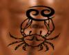 {DS}Reborn2 tatttoo