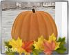 Rus:FALL orange pumpkin