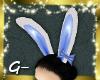 G- Blue Bunny Ears
