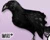 Crow Pet (Left Shoulder)
