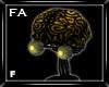 (FA)BrainHeadF Gold