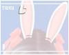 T! Bunny Ears - Sweet