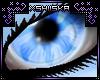 .xS. Skina|Eyes ~F~