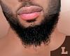 Beard^D.O.P. E .03