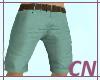 [CN] Summer Shorts V