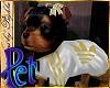 I~YorkieSport*Wht&G.Pet
