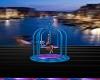 Dance Cage Venedig