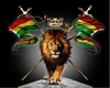 rasta eye lion