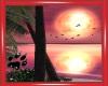 CW Paradise Island