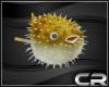 CR*Kugelfish