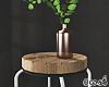 Corner Table w Plants