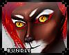 [Male] Vlam Bundle