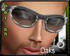 !P!Oaks.V3