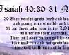 Isaiah 40: 30-31
