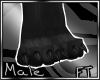 (M)Blk Big Paw Reg [FT]