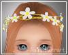 ♡ Little Daisy Crown