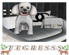 ℰ. CC Dog Bed