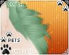 [Pets]Frankie | hip tuft