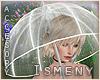 [Is] Umbrella Plastic