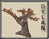 [DTR] Ancient Tree