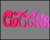 +Logo 4+