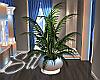 Prestige Potted Plant