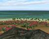 SC Private Anim Island