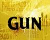 (VLT) ST-Guns V3