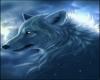 Fantasy Wolf 2