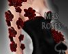 Cat~ Arm Roses