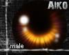 [Aiko] Brown Eyes-Male