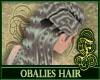 Obalies Gray