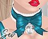 *S  Kitty Collar T