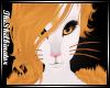 !S! Mynx | Whiskers V2