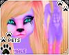 [Pets] Phir   abs fur