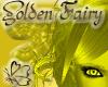 (RN)*HoT Golden Fairy EB