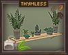 MOSS Shelf Plants