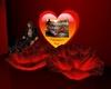 J* HV*SJ heart and roses